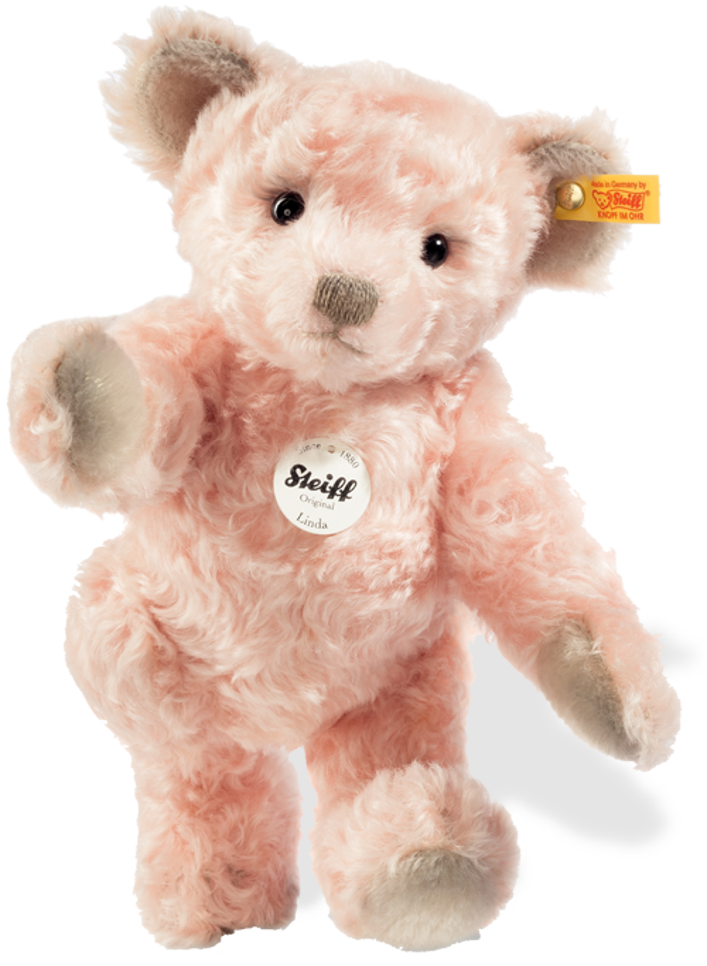steiff bear 000331
