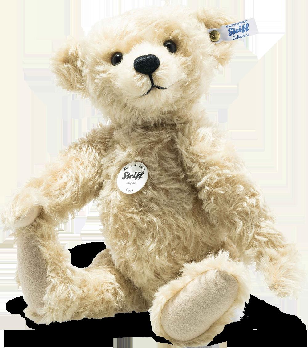 steiff bear 022920