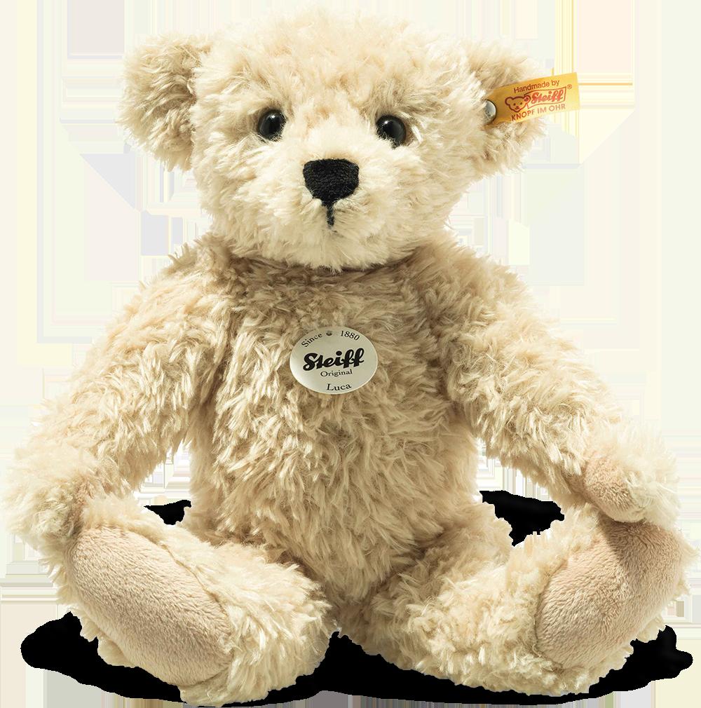 steiff bear 023019