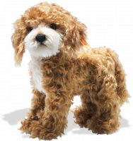 click to see Steiff  Ricky Cockapoo in detail
