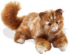 click to see Steiff  Mizzy Maine Cat in detail