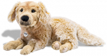 click to see Steiff  Andor Golden Retriever in detail