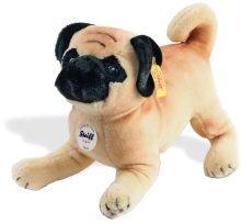 click to see Steiff  Mopsy Pug in detail