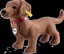 click to see Steiff  Waldi Dachshund - Woof Woof! in detail