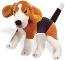 click to see Steiff  Beagle in detail