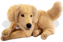 click to see Steiff  Lumpi Golden Retriever in detail