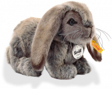 click to see Steiff  Mummel Big Lop in detail