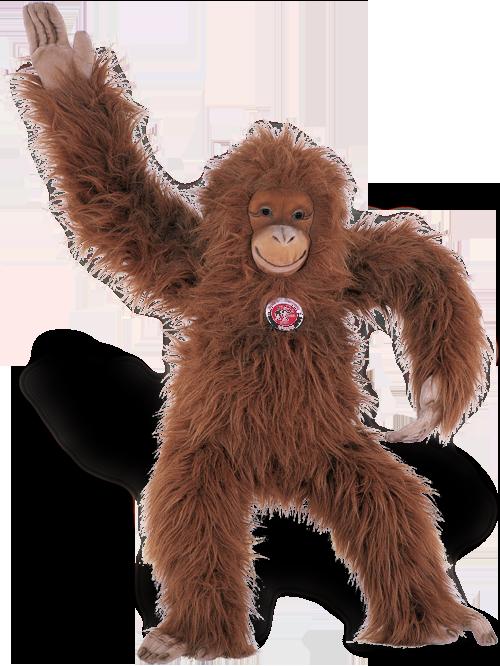 steiff bear 501708