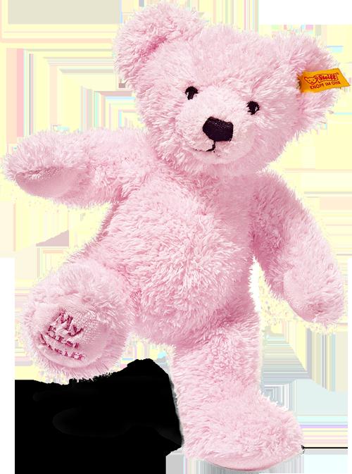 steiff bear 662034