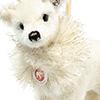 steiff bear 006234