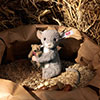 steiff bear 006395