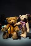 steiff bear 021022