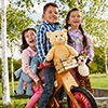 steiff bear 062544